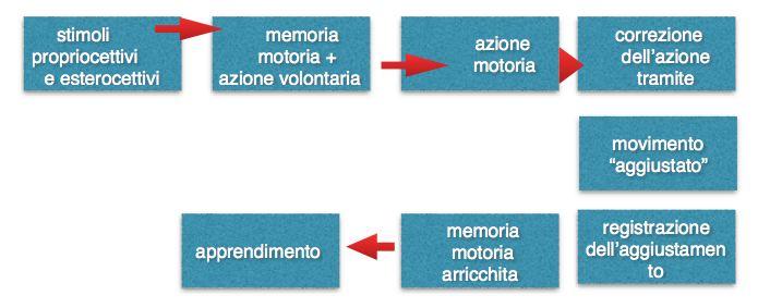 schema-acquisizione-movimento-arrampicata